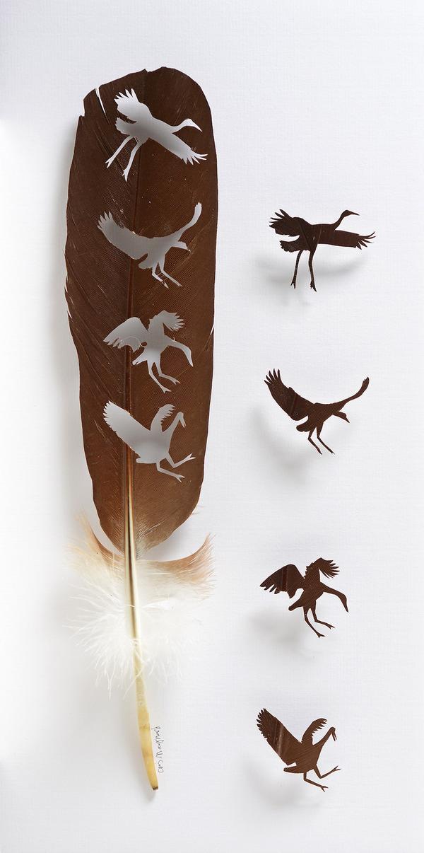 鳥の羽から切り取られた鳥類や動物のモチーフ (10)
