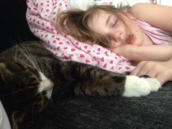 ペットは大切な家族!犬や猫と人間の子供の画像 (43)