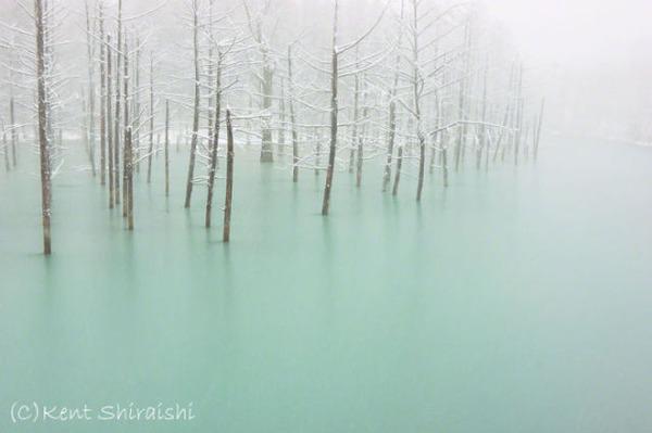 北海道の景観