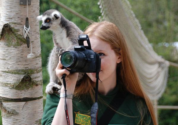 カメラに興味津々な動物の画像 (11)