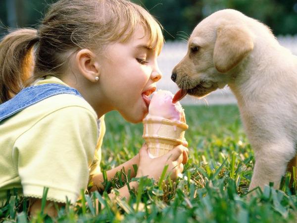 ペットは大切な家族!犬や猫と人間の子供の画像 (24)