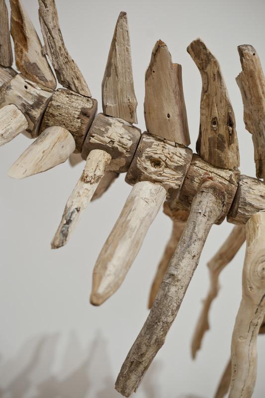 流木彫刻!絶滅した淡水イルカ、ヨウスコウカワイルカを描く (9)