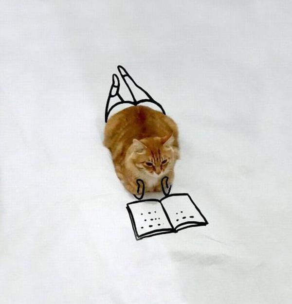 才能の無駄遣い?香箱座りの猫の画像にみんなで落書き! (17)