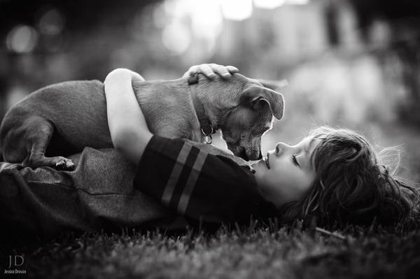 ペットは大切な家族!犬や猫と人間の子供の画像 (17)