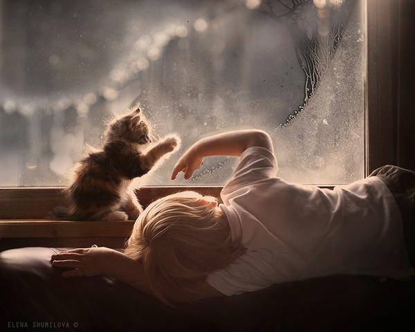 ペットは大切な家族!犬や猫と人間の子供の画像 (10)