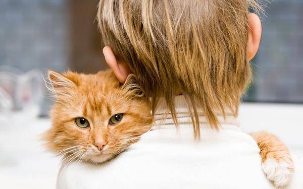 ペットは大切な家族!犬や猫と人間の子供の画像 (31)