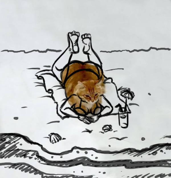 才能の無駄遣い?香箱座りの猫の画像にみんなで落書き! (18)