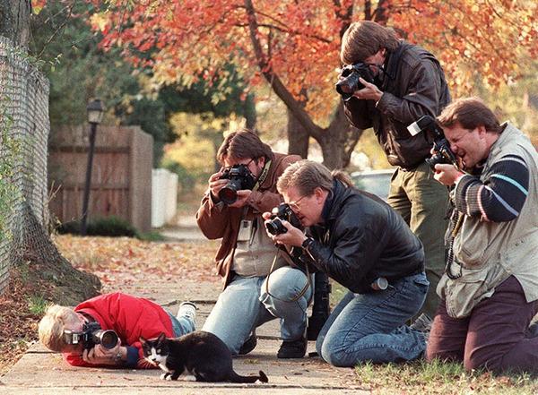 クレイジーなカメラマン 25