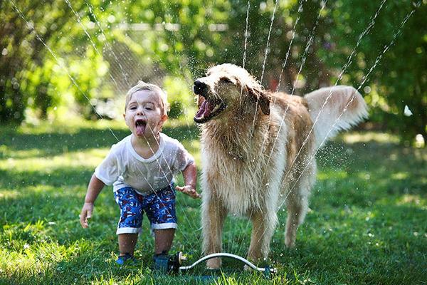 ペットは大切な家族!犬や猫と人間の子供の画像 (87)