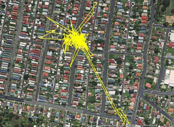 猫の行動範囲が思ったより広い!GPSで猫の行方を追跡 (5)