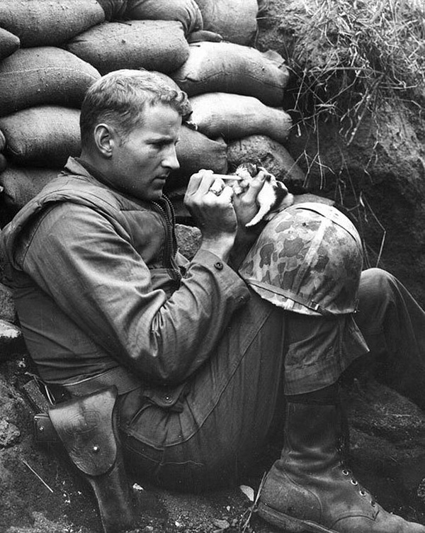 #11 子猫を助ける兵士