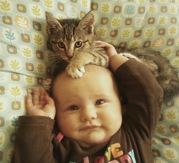 ペットは大切な家族!犬や猫と人間の子供の画像 (15)