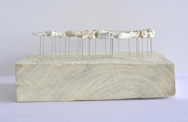 本物みたい。珊瑚の欠片で作る人体の骨格標本 (3)