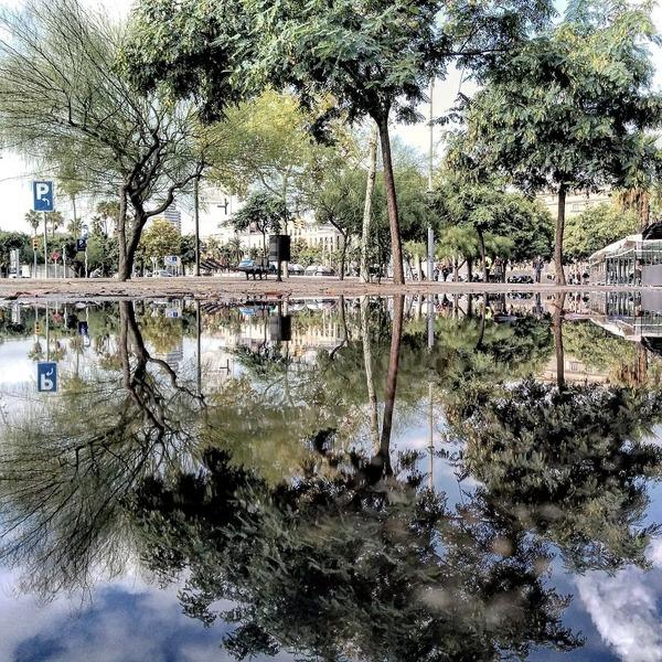 パラレルワールド!水たまりに反射する街の風景写真 (15)
