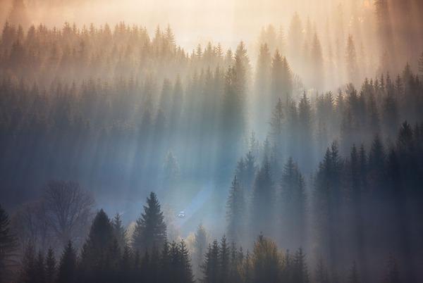 陽が差し込んだポーランドの景色3