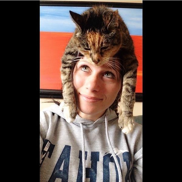 猫帽子 14