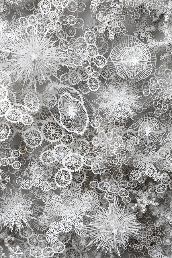 顕微鏡で覗く微生物みたい。繊細なペーパーカットアート (2)