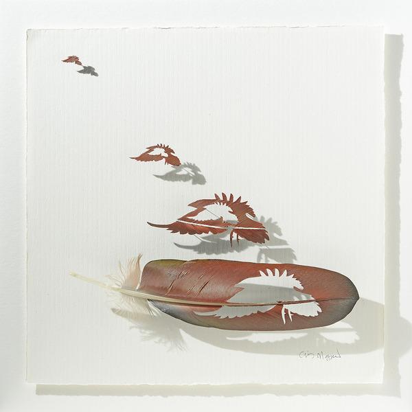 鳥の羽から切り取られた鳥類や動物のモチーフ (7)