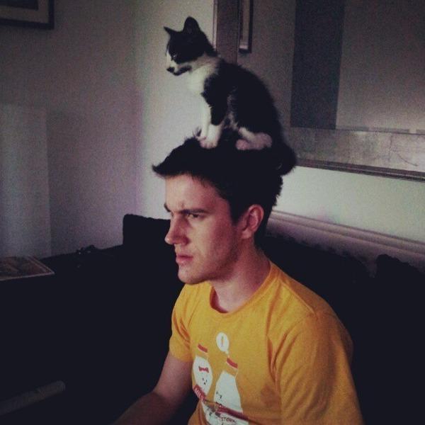 猫帽子 2