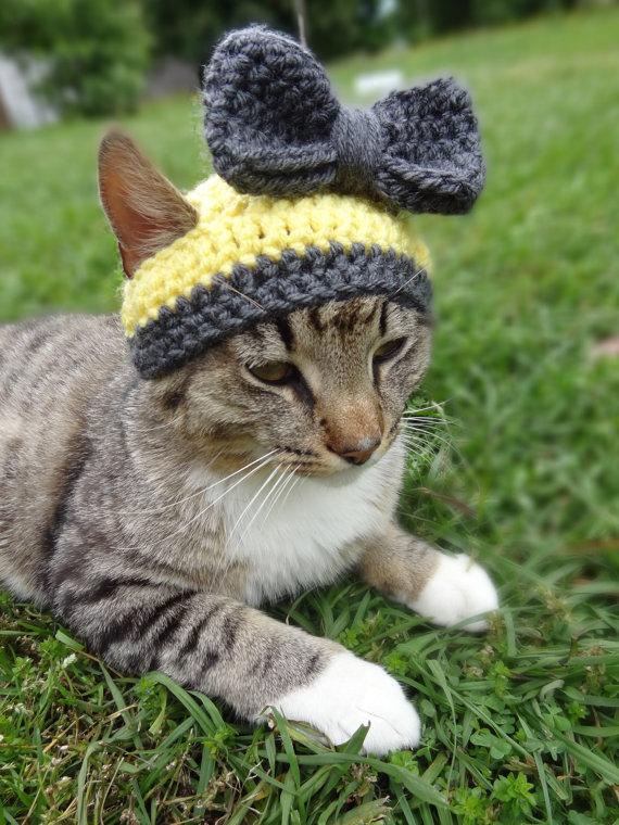 かわいさアップ?猫にぴったりなペット用ニット帽_ (3)