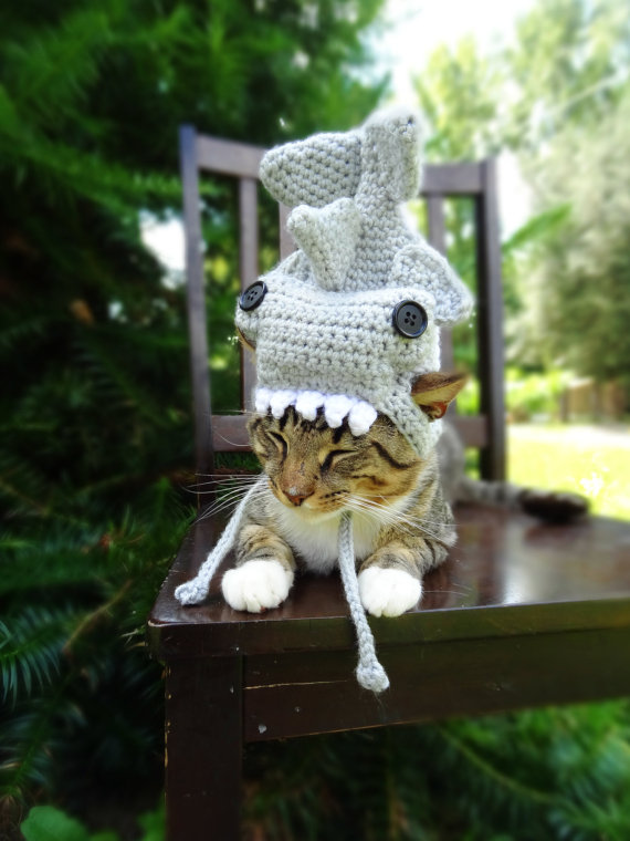 かわいさアップ?猫にぴったりなペット用ニット帽_ (5)