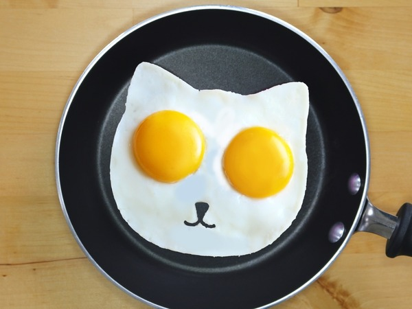 ネコ型目玉焼きが作れる金型で毎朝元気いっぱいだにゃん (1)