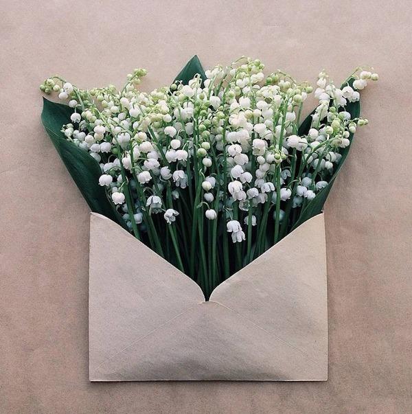 クラフト封筒に入れられた花束 (13)