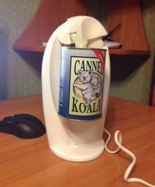 コアラの缶詰を開ける