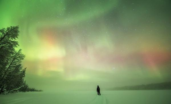 フィンランド北欧の美しい夜空。満天の星の画像 9