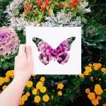 切った紙の動物のシルエットを自然が色鮮やかにカラーリング!