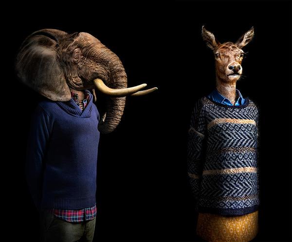 野生動物や植物に人間の服を着させたシュールな肖像写真 (7)