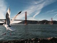 プロ顔負けの綺麗な写真。iPhone6で撮影された美しい風景画像!