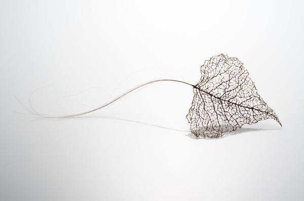 超繊細!人間の髪の毛で作るリアルな木の葉 (5)