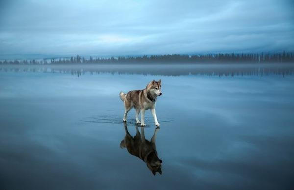 鏡のような綺麗な湖と空