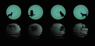 夜行性動物のシルエットが浮かぶ!月のように輝く蓄光掛け時計