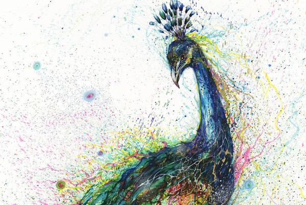 孔雀の水墨画 -HUA TUNAN- 画图男 2