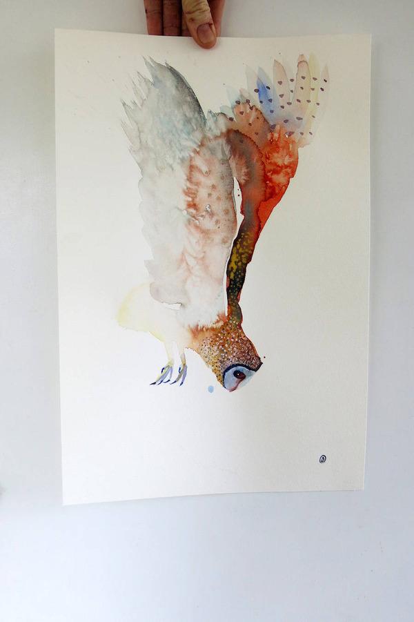 フクロウやワシなどの鳥類を描いたカラフルな水彩画 (9)
