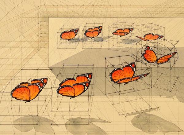 黄金比で描かれた手描きイラスト集!蝶や貝殻など (4)