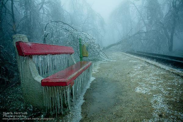 凍てついたハンガリーの街