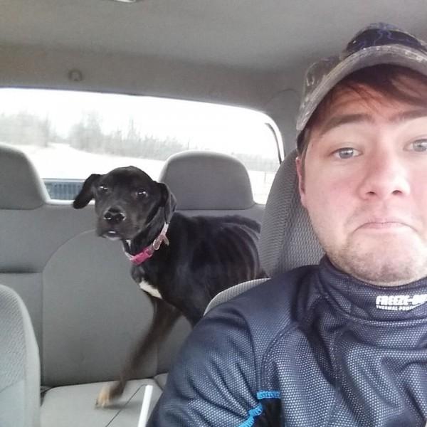 犬を車に乗せてこの場所を立ち去る