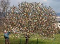 10,000万個の卵!イースターエッグで飾る木 イースターツリー