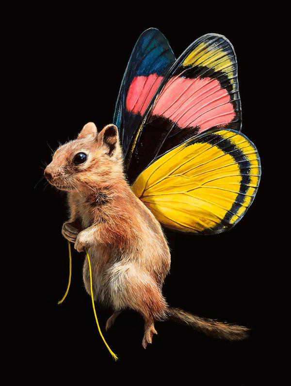 蝶々の羽が生えたネズミやリス小動物を描いた絵 (8)