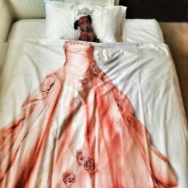 ベッドで寝る犬 かわいいおもしろ画像 15