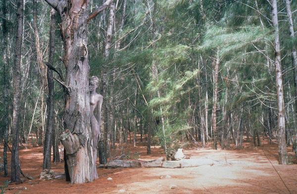 ボディペイントで自然と一体化!擬態化したような人間の画像 (4)