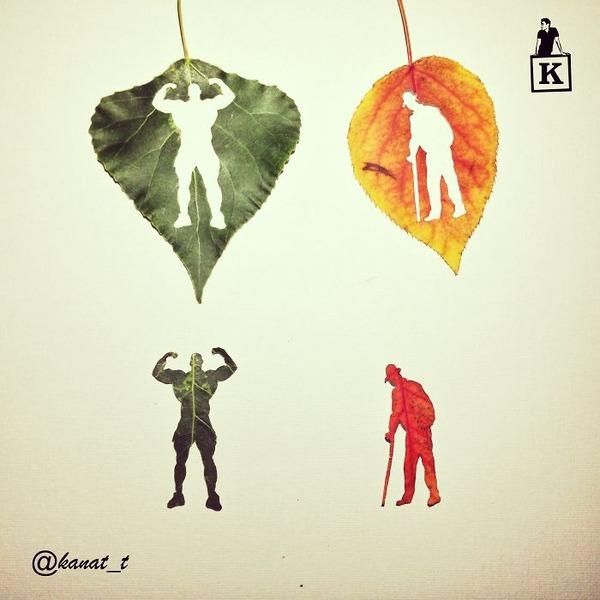 シンプルな美しさ。葉っぱの切り絵アート (5)
