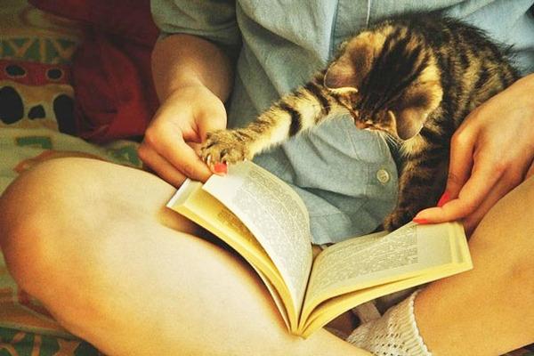 待って、まだ読んでる