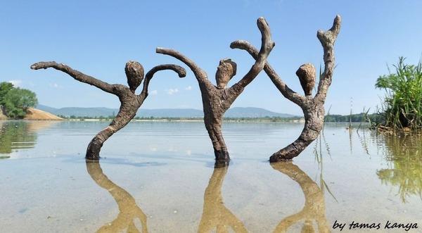 歪な形がゾンビっぽい!ドナウ川の流木で作られた彫刻作品 (11)