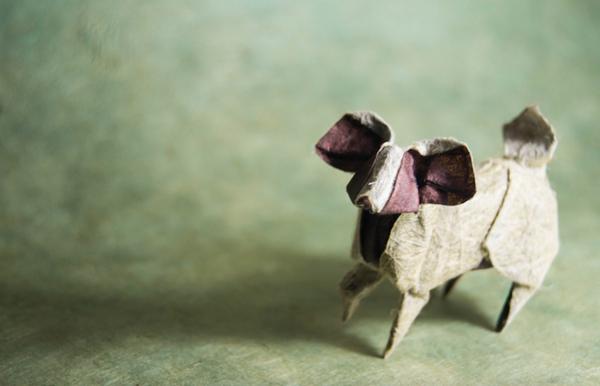 一枚の紙から折り紙で作る動物!折り紙アート (10)