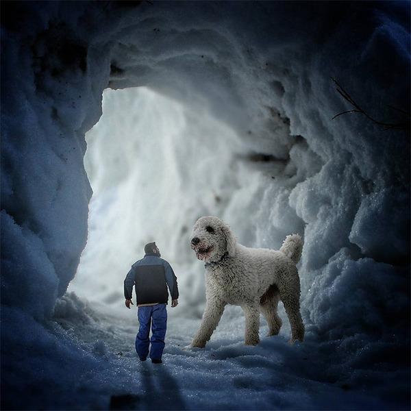 犬を大きくする!そんな夢をフォトショップの画像加工 (16)