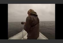 写真撮影中のボートにクジラが接触し、海へ転覆するアクシデント!